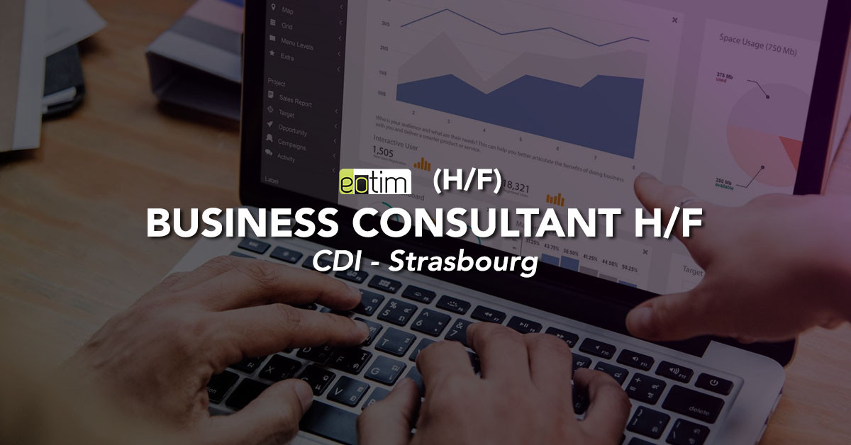 Business Consultant M/F