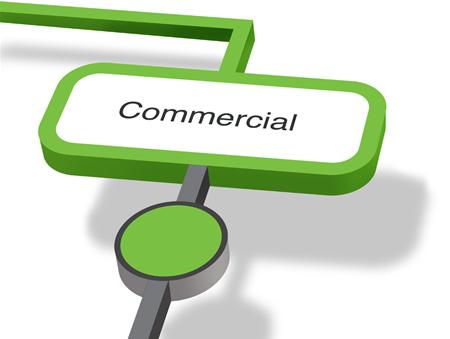 Commercial IT / Business Developer (Web/Digital) (H/F)