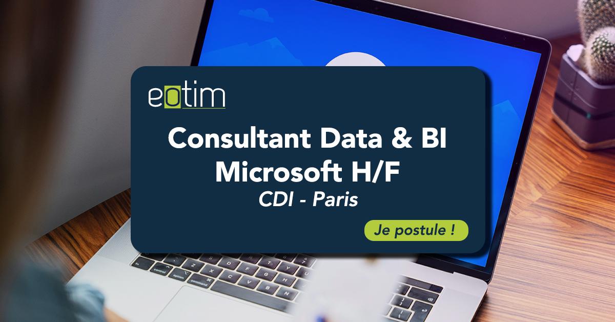 Consultant Data & BI Microsoft  H/F
