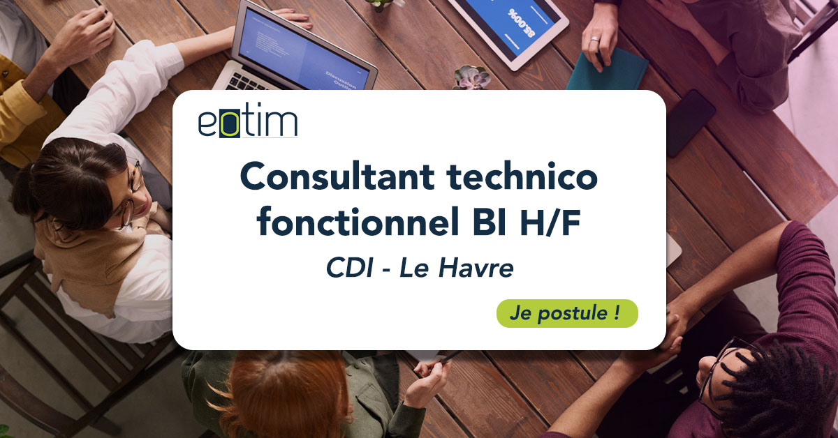 Consultant technico fonctionnel BI H/F