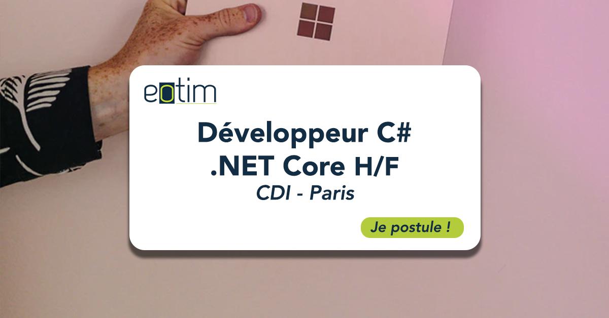 Développeur C# .NET Core H/F