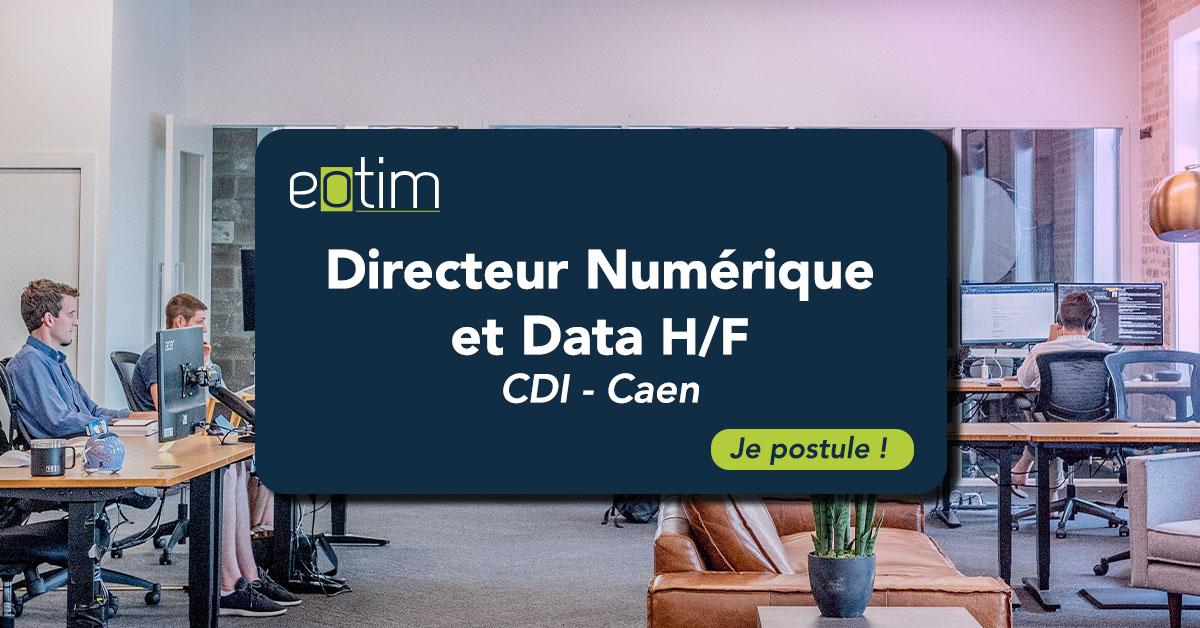 Directeur Numérique et Data H/F