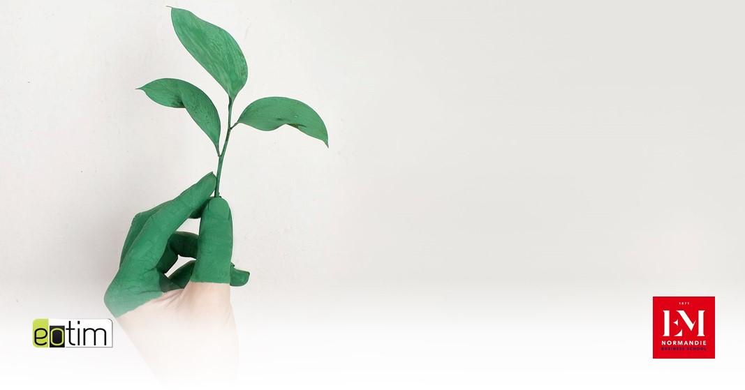 Eotips #116 : Environnement : Quels gestes adopter au bureau ?