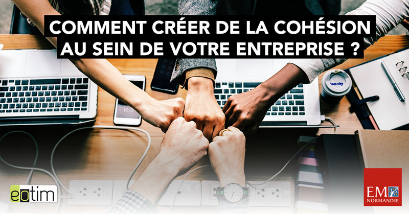 Eotips #71 : Comment créer de la cohésion au sein de votre entreprise ?