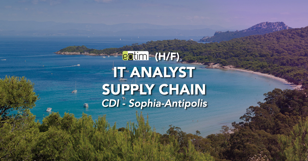 IT Analyst Supply Chain H/F