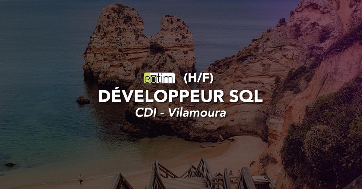 Développeur web SQL H/F