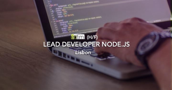 Lead developer Node.js H/F